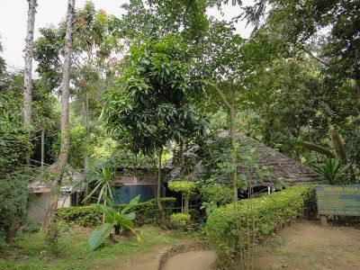 marangu village