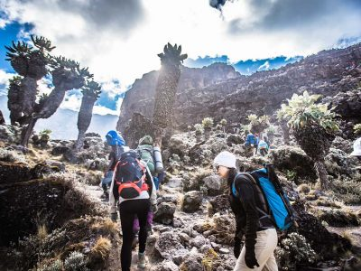 kilimanjaro_1